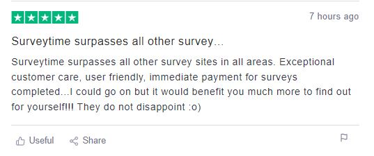 Surveytime User Reviews